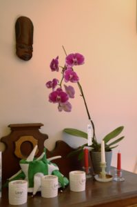 Orchid and African Mask